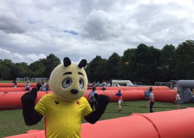 Watford Harry Hornet